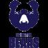 bristol-bears-logo